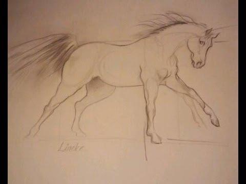 Hoe teken je een paard in Galop