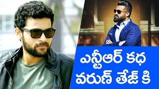 NTR story for Varun Tej || From Janatha Garage star to Kanche actor - IGTELUGU