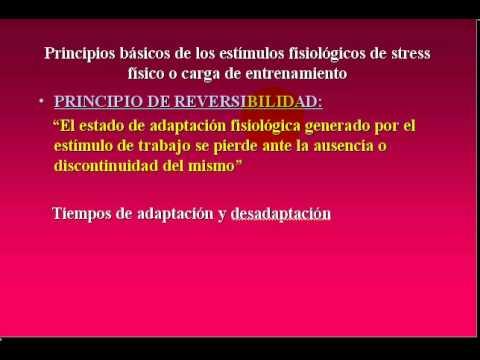FISIOLOGIA DEL EJERCICIO  2009 - 5