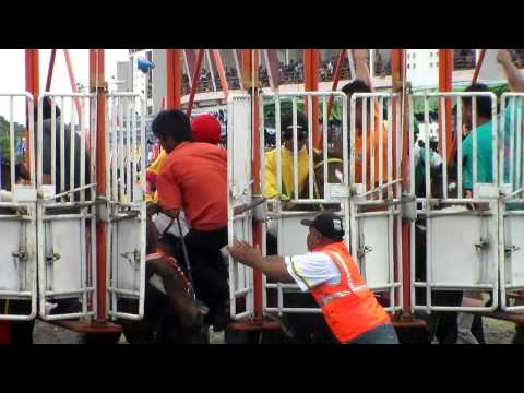 Pacuan Kuda Istimewa Piala Sultan HB X, Kuda Ngambek di Start Gate  1