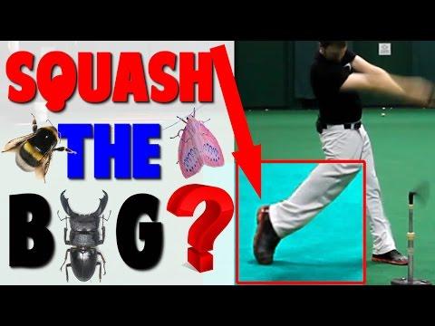 Baseball Hitting Drill | Squash the Bug? (Pro Speed Baseball)
