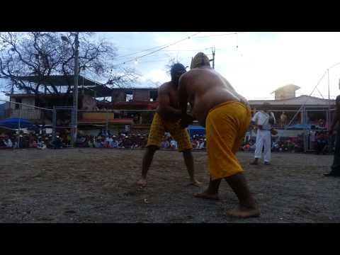 Porrazo de Tigres en Tixtla Guerrero.