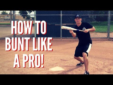 Baseball Bunting Fundamentals: Bunt Like A Pro! - Baseball Hitting Tips