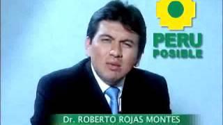 ¿Que es Perú Posible?