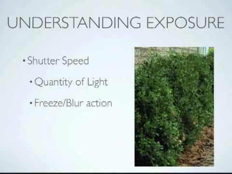 A Guide To Understanding Exposure in Photography