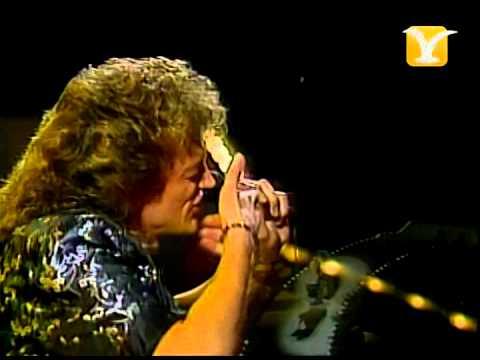 Domenick Allen, Festival de #ViñadelMar 1986