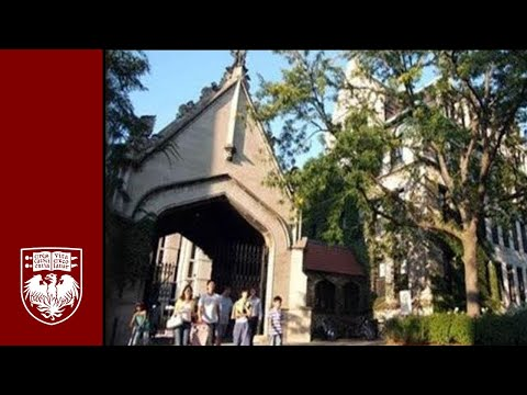 university of michigan supplement essay 2
