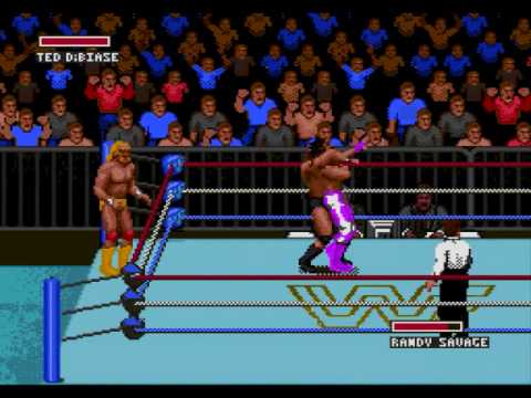 Finishing Moves of WWF Super WrestleMania