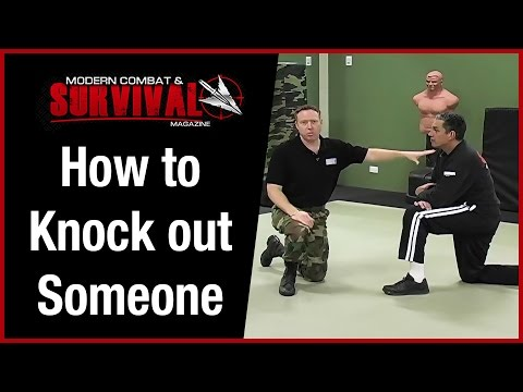 How To Knock Someone Out With One Punch To The Head