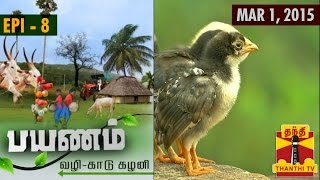 Payanam – Via  Dense Forests and Lush Greeneries 01/03/2015 – Thanthi tv show