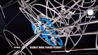 روبوت طائر شبيه بطائر السنور !