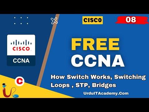 FREE URDU CCNA Lecture 8