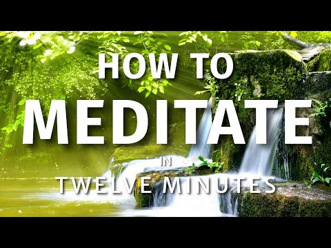 How To Meditate In Twelve Minutes (Guided Meditation & Mindfulness Meditation for Beginners)