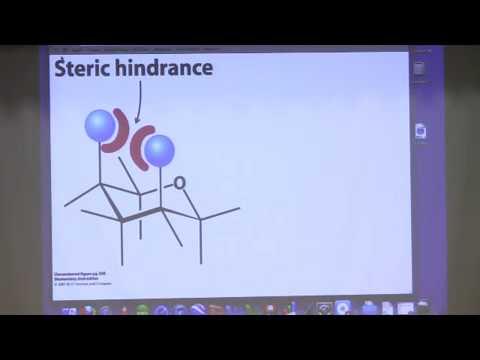 Bite-Sized Biochemistry #17:  Carbohydrates II