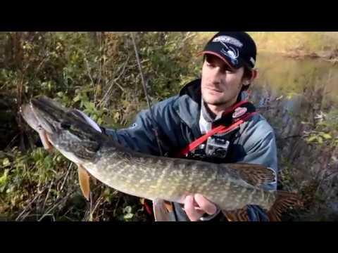 рыбалка на реке лоза