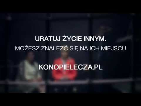 Kampania społeczna na rzecz legalizacji w Polsce medycznej marihuany.