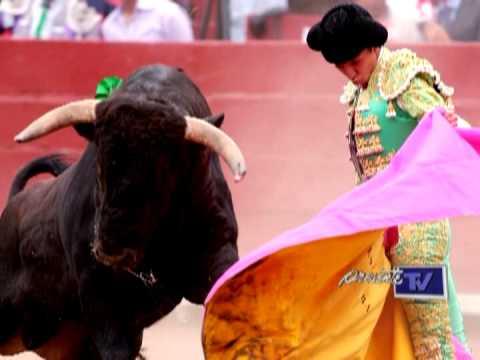 Propuesta para impedir corridas de toros, peleas de perros y gallos con nueva reforma en Tabasco