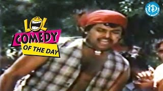 Comedy Of The Day 202 || Radhika Making Comedy With Chiranjeevi || Donga Mogudu Movie - IDREAMMOVIES