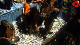 إدراج هرم «ميدوم» ضمن برنامج زيارة الأهرامات بالأجندة العالمية