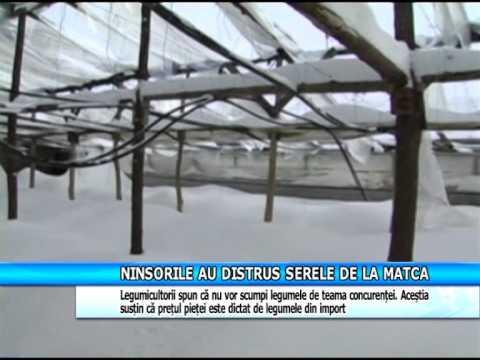 NINSORILE AU DISTRUS SERELE DE LA MATCA