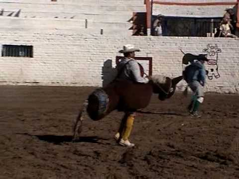 Payasos de Rodeo en San Marcos