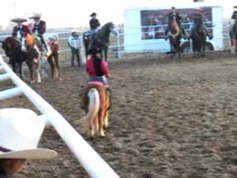 CABALLO PONY BAILADOR DANCING IN MERCED CA.