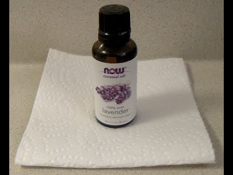 Aromatherapy: How to Make a Lavender Inhaler