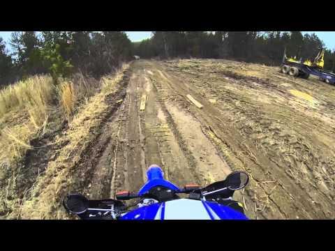 Dual Sport: Logging Road Bartow County