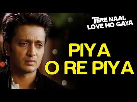 Piya O Re Piya Sad - Tere Naal Love Ho Gaya - Atif Aslam & Priya Panchal