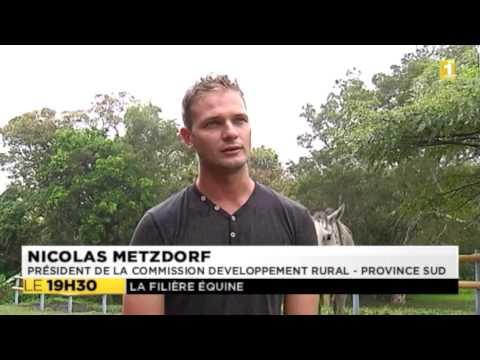 Nicolas Metzdorf soutient la filière équine - 11-10-2014