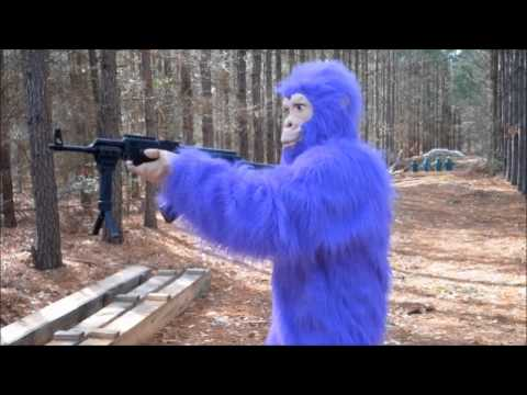 Monkey with AK-47