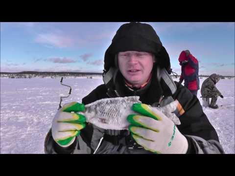 рыбалка на цимлянском водохранилище сейчас
