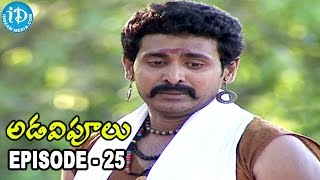Adavipoolu || Episode 25 || Telugu Daily Serial - IDREAMMOVIES