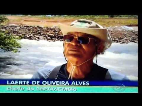 Crime ambiental no Rio Verde em Mato Grosso do Sul.
