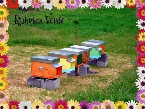 Rubrica Verde: Casa Dolce Casa-l'Arnia, attrezzatura ed extra