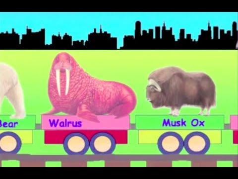 Learn Polar Animal Train - learning animals for kids