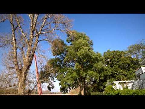 Microsoft Lumia 830 1080p Beispielvideo