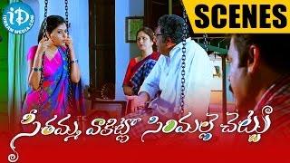 Seethamma Vakitlo Sirimalle Chettu Movie | Prakash Raj, Anjali, Venkatesh Comedy Scene - IDREAMMOVIES