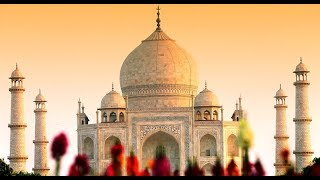 SC extends Uttar Pradesh govt's to submit vision document on protection of Taj Mahal - NEWSXLIVE