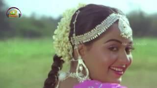 Chirala Chilaka Music Video | Muddayi Telugu Movie Video Songs | Krishna | Radha | Mango Music - MANGOMUSIC