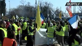 Yellow Vests protest in front of UN headquarters in Geneva - RUSSIATODAY