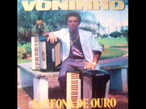 Voninho - SANFONA DE OURO