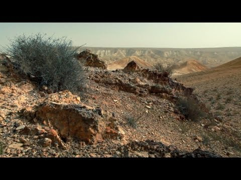 Stock Footage of a rocky desert landscape in Israel.