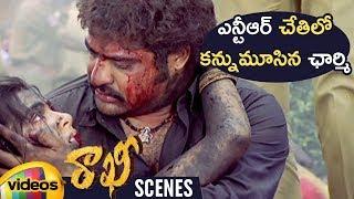 Jr NTR Fails to Save Charmi | Rakhi Telugu Movie Scenes | Ileana | Charmi | DSP | Mango Videos - MANGOVIDEOS