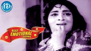 Telugu Movies || Best Emotional Scenes || Ramalayam Movie - IDREAMMOVIES