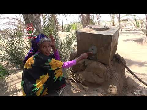 إنتهاكات مليشيات الحوثي تطال منازل ومزارع المواطنين في التحيتا