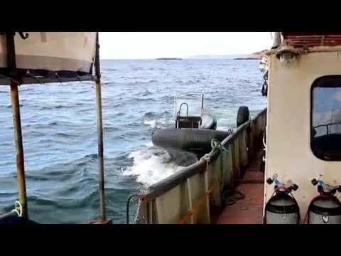 рыбалка на баренцевом море в июне