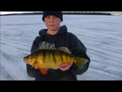 Related video for Jaw jacker ice fishing