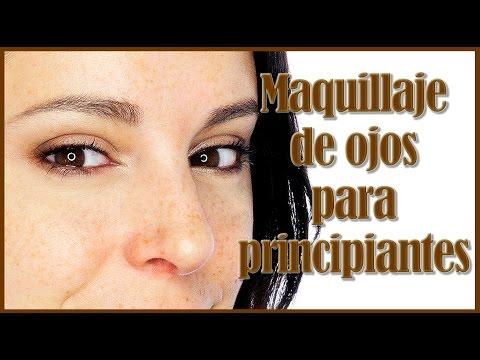 Tutorial maquillaje para principiantes y partes del ojo l Silvia Quiros
