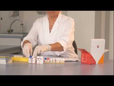 ELISA Test Systems in Autoimmune Disease Diagnostics (Autoimmunity)